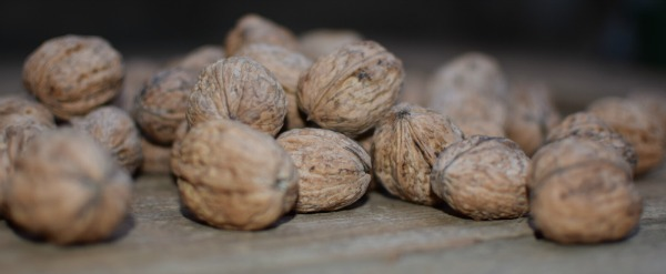 fresh organic walnuts
