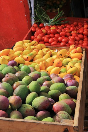 A selection of mangoes in a box