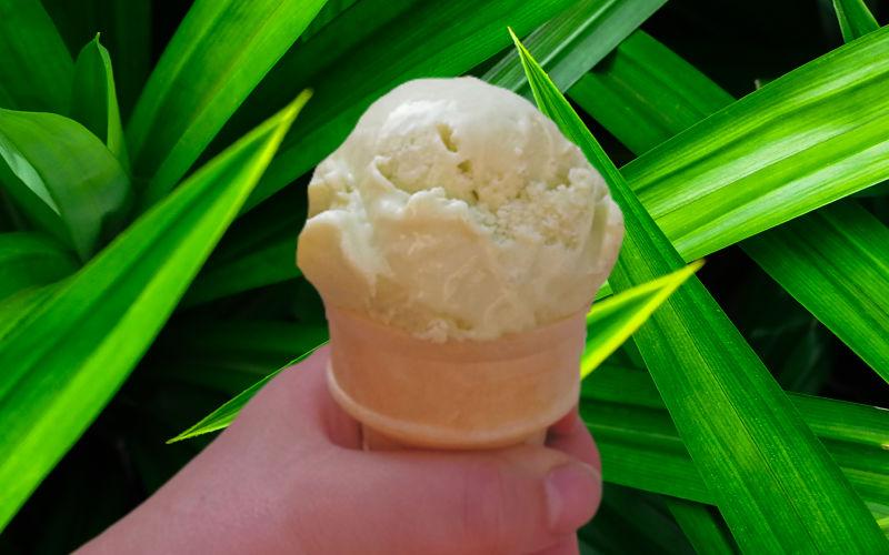 A scoop of pandan ice cream in a cone
